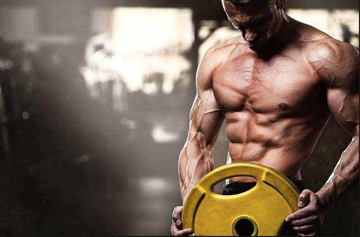Beginner steroids cycles